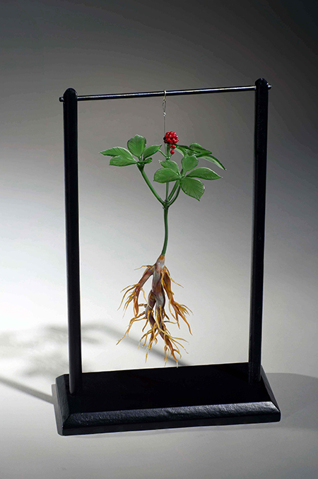 """Ginseng"" by Margaret Neher"