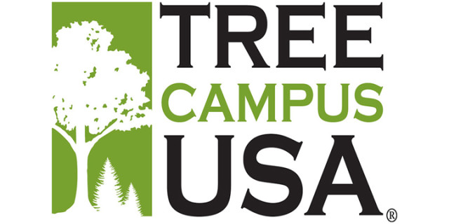 tree-campus_new