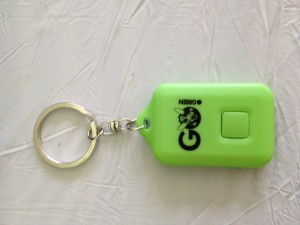 Our gift the class of 2017; solar keychain lights