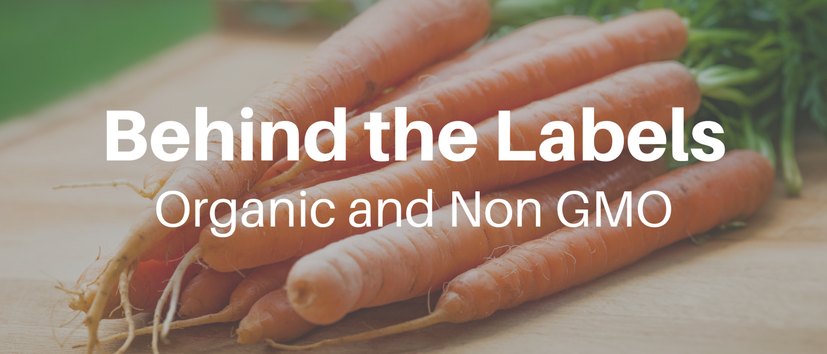 Behind the Labels: Organic and Non-GMO Food